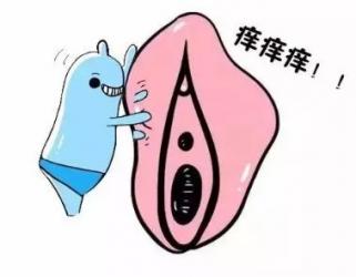 青岛外阴白斑营养不良有什么症状
